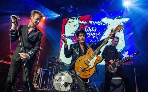 Wild Romance gitarist David Hollestelle gaat helemaal los (maar nu zonder dope)