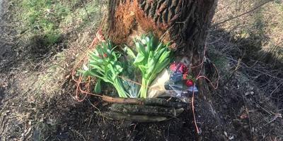 Bloemen op de plek van het ongeluk