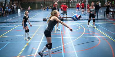 Het huren van sporthal De Zwet wordt voor sportclubs goedkoper dankzij een Europese BTW-richtlijn. Foto Corné Sparidaens