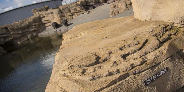 De bordjes waarmee moet worden voorkomen dat bezoekers op de rotsen klimmen. FOTO VINCENT TRECHSEL