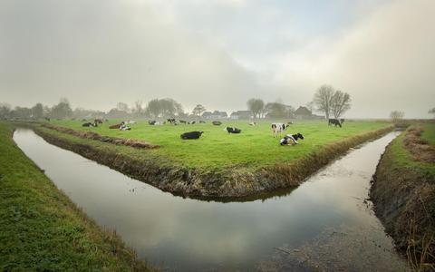 Duurzame Drentse boeren lopen voorop. 'We willen wel verduurzamen, maar op onze eigen manier'