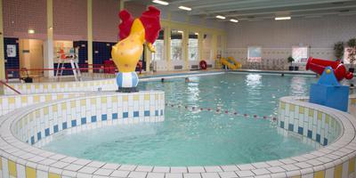 Het huidige zwembad De Dolfijn is sterk verouderd. Foto: DvhN