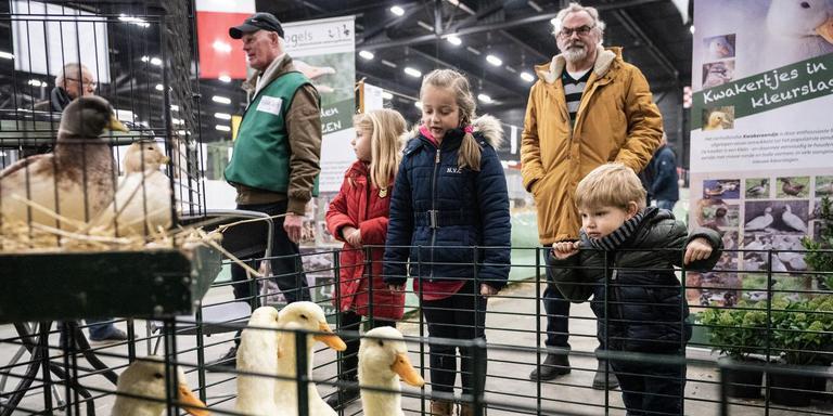Voor kinderen was er een uitgebreid dierenplein. Foto Jaspar Moulijn