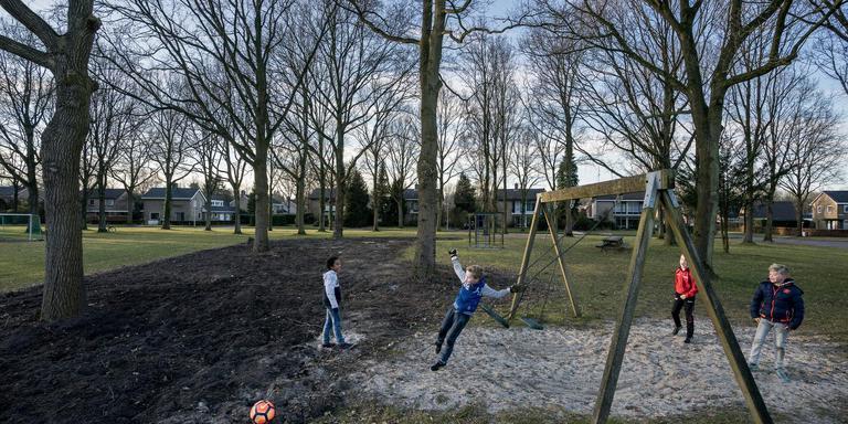 De gemeente Aa en Hunze rooide deze strook met bosjes in Gieten. Een groot deel van de omwonenden is daar alles behalve blij mee.