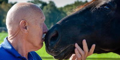 Dr. Pol en het paard breken het ijs door elkaar in de neus te blazen. Foto Gerrit Boer