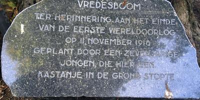 De gedenkplaat werd in 1984 onthuld door Joop Postma.