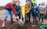 Eerste tiny forest Hoogeveen bij Nijstad, gemeente op zoek naar andere locaties