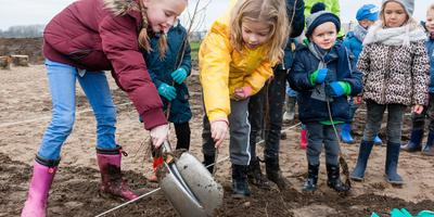 In Meppel plantte de jeugd in december een tiny forest. Hoogeveen volgt binnenkort. foto archief Gerrit Boer