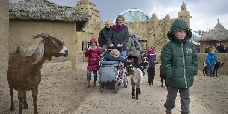 Emmen steunt Wildlands met een forse financiële injectie. Foto: Archief Jan Anninga