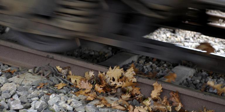 Dertien gezinnen vrezen overlast wanneer er bij Emmen-Zuid een extra spoor wordt aangelegd. Archieffoto ANP/Marcel van Hoorn