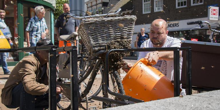 Bijen op fiets aan het Koopmansplein. FOTO DVHN / FRANK JEURING