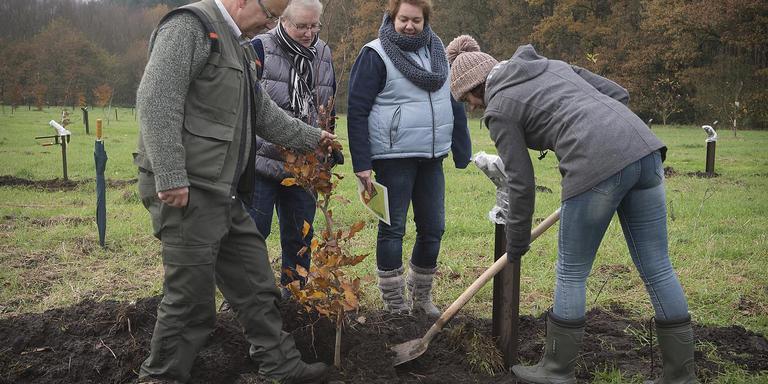 Een familie plant een boom in het herinneringsbos in Sleen. Foto Jan Anninga
