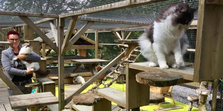 Renate Tuin tussen de raskatten, op het dakterras van Cats-Inn. FOTO DVHN