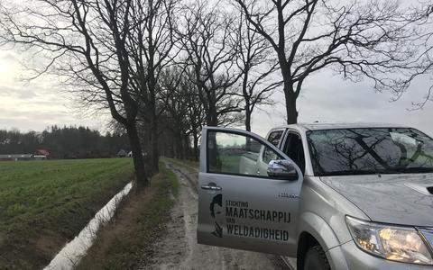 Maatschappij van Weldadigheid kapt 160 bomen, PvdA verbaasd