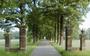 Ruinerwold-vader Gerrit van D. liet moeder van zijn kinderen in het geheim cremeren