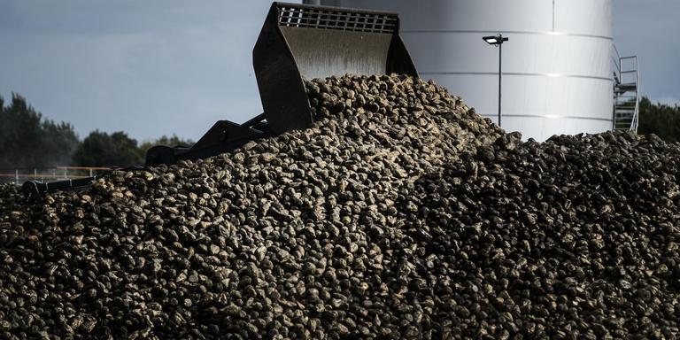De suikerfabriek Vierverlaten in Hoogkerk is een van de grootverbruikers van Groningen-gas.