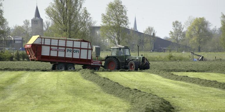Van het oogsten van ruwvoer komt door de droogte dit jaar niet veel terecht. Een aantal boeren spreekt daardoor nu al de wintervoorraad aan.