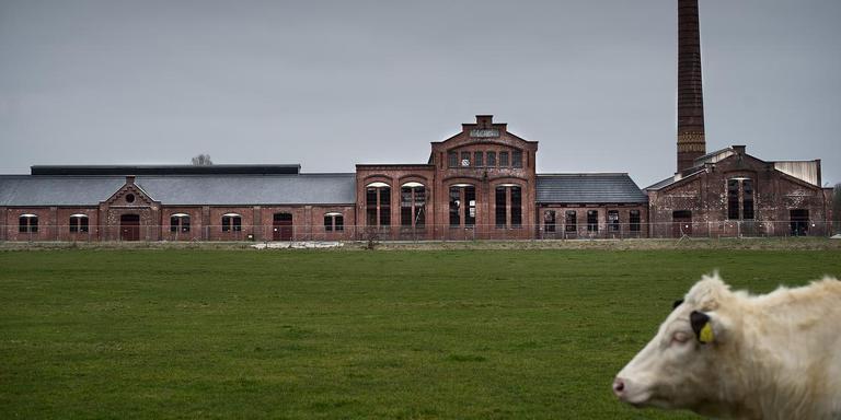 Er wordt hard gewerkt om van strokartonfabriek De Toekomst in Scheemda een toeristische trekpleister te maken. Foto Archief Corne Sparidaens