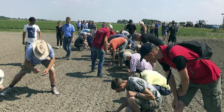 De boeren bekijken wat er nog van het onkruid over is nadat het land is bewerkt door de Deense onkruidverbrander.