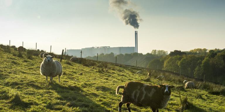 Attero in Wijster produceert groen gas dat in het Rendo-netwerk wordt geïnjecteerd. Foto: Marcel Jurian de Jong