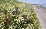 Op de elektrische fiets van dorp naar dorp: opladen op Texel