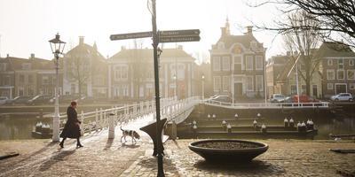 Het stadhuis van Harlingen in de ochtendzon. Foto: Marcel van Kammen