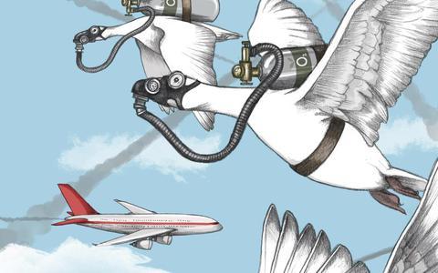 Vliegschaamte: 'Reizen is geweldig maar er begint iets te knagen'