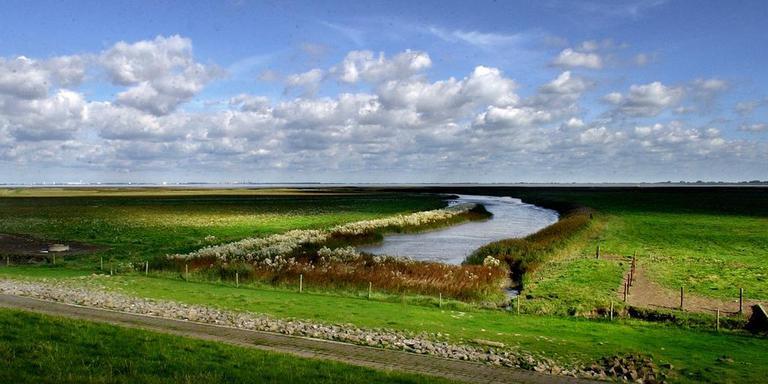 De Carel Coenraadpolder achter de zeedijk. Foto: Archief Jan Zeeman