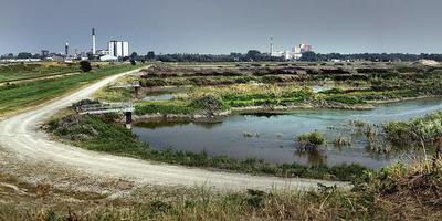 Het oude SuikerUnie-terrein. Foto Corné Sparidaens