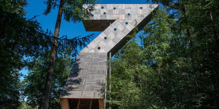 De uitkijktoren in het Fochteloërveen.