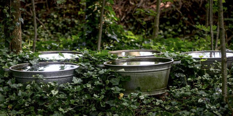 Kano van tielen water. FOTO CORNÉ SPARIDAENS