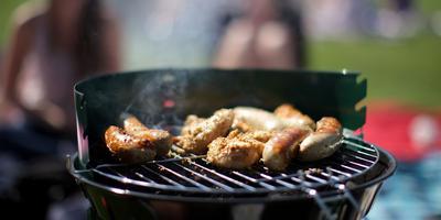 Barbecuen met kolen die zijn gemaakt van bermgras? Een nieuw Gronings bedrijf is bezig om die kolen te maken. Foto: Archief DvhN