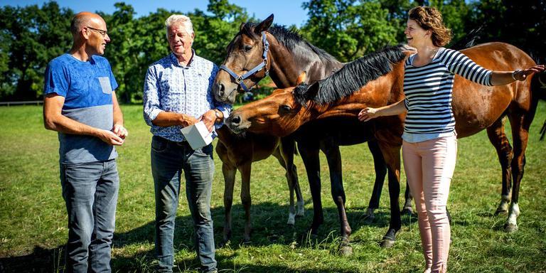 Fonnie Allers, Sietse van Dellen en Ella Huizinga (vlnr) van stichting Paardenkwartier Westerkwartier willen de regio nog aantrekkelijker maken voor paardenmensen. Foto: Jilmer Postma