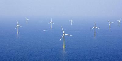 Windparken op zee leveren groene stroom voor de productie van waterstof. Foto: Lex van Lieshout