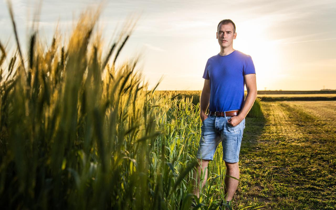 Akkerbouwer Gert Noordhoff bij het oertarwe Emmer in Bellingwolde.