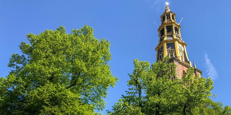 De rechtbank in Groningen heeft de gemeente woensdag verboden om in afwachting van een rechtszaak alvast vijf bomen te kappen bij de Der Aa-kerk in de binnenstad. Foto: Archief DvhN