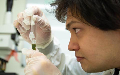 Een illegaal laboratorium gaat wiet testen en roept iedereen op: 'Kom langs, want je wilt weten wat je rookt'