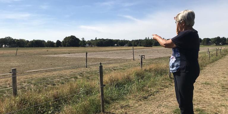 Annie Dikkema wijst naar de plek in haar weiland waar vroeger een fort moet hebben gestaan.