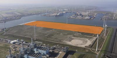 Het terrein in de Eemshaven waar Merksteijn gaat bouwen. Illustratie: Koos Boertjens