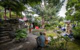 De Chinese tuin biedt een sfeervol decor voor het poëziefestival.