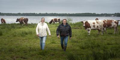 Sandra en Harald Woldring tussen hun Roodbont. Foto Archief Reyer Boxem