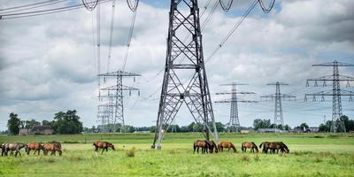 De nieuwe 380 kV-hoogspanningsverbinding moet de huidige 220 kV-lijn vervangen. Foto: Corné Sparidaens.