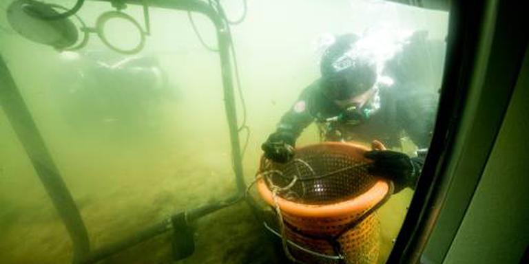 Zeeuws mosselseizoen officieel van start