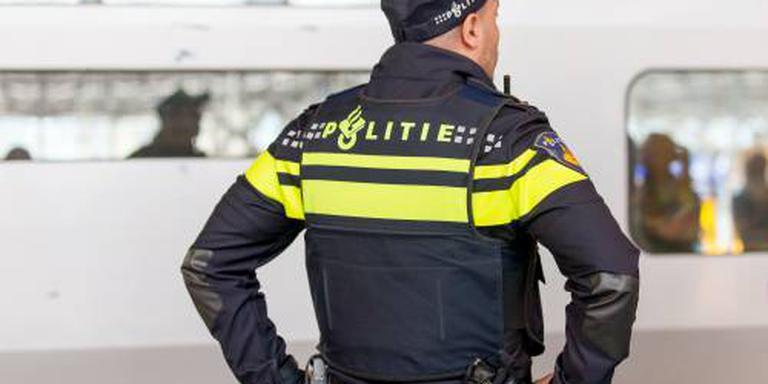 Nepagent aangehouden in Den Hoorn