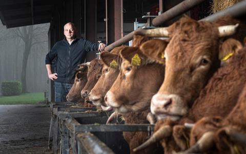 Henk wortelboer heeft met zijn broer Jan een boerderij in Jipsingboertange.