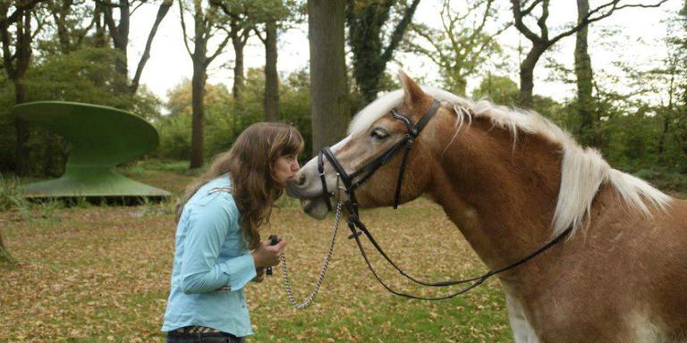 OM wil werkstraf voor verduistering paarden