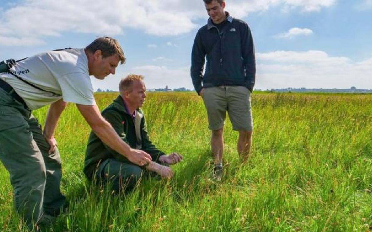 Henk-Jan van der Veen en Pieter Sjoerdsma van Staatsbosbeheer samen met onderzoeker Mo Verhoeven (rechts) in het kruidenrijke land in de Heanmar.