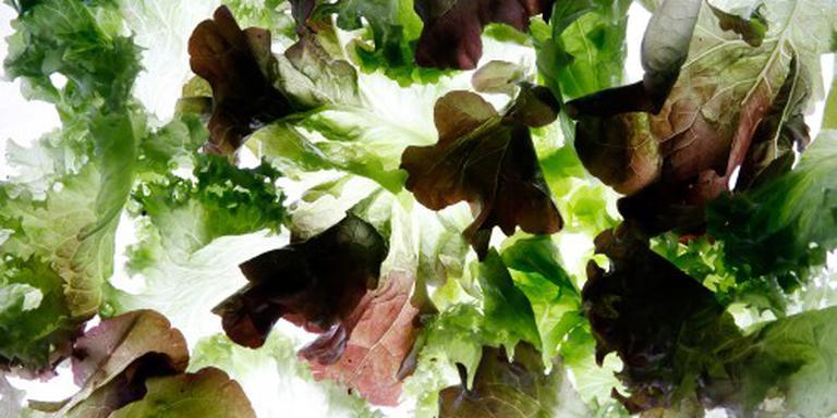 Schijf van Vijf: meer groente, minder vlees. Foto: ANP