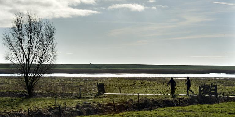 De natuur in polder Breebaart is imposant. FOTO PETER WASSING