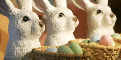 Het is bijna Pasen! Dat betekent een bomvolle activiteitenagenda. Foto: ANP